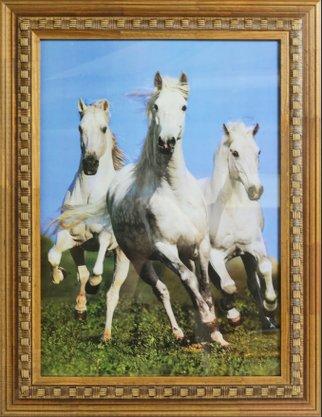 Quadro Decorativo Pronto Gravura Cavalos Brancos 86 CM x 66 CM